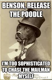 BENSON, RELEASE THE POODLE I'M TOO sophisticated TO CHASE THE ... via Relatably.com