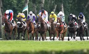 """Résultat de recherche d'images pour """"image chevaux de courses"""""""