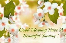 sunday good morning images photo pics wallpaper pictures hd free