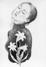 イラストのブログ記事一覧 牡丹の花