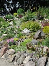 Small Picture 25 Rock Garden Designs Landscaping Ideas for Front Yard Rock