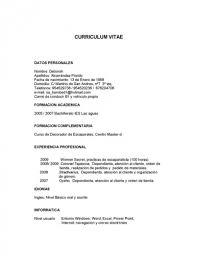 Modelo De Curriculum Vitae En Word Roswell Strobel Modelo De Curriculum Vitae