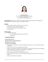 Resume Simple Job Resume Template