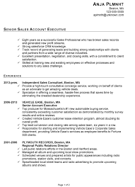 resume for senior sales account executive susan ireland resumes  chronological samples examples format