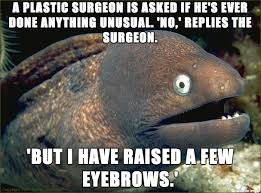 I used to really enjoy the Lame Joke Eel memes but I never see ... via Relatably.com