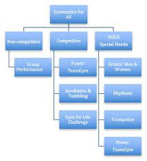 Usa Gymnastics Gymnastics 101 Gymnastics For All