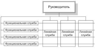 Курсовая работа Сущность организационных структур управления и  Функциональная организационная структура управления Сплошные горизонтальные линии показывают горизонтальные управляющие обязательные связи