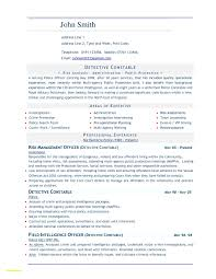 Download Sample Resume Format In Word Document Inspirationa Resumes
