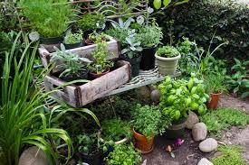 Small Picture Garden Design Garden Design with Wednesday in the Herb Garden