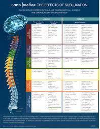 Meric Chart Meric Chart Performance Chiropractic
