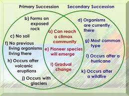 Primary Succession And Secondary Succession Venn Diagram Secondary Succession Diagram