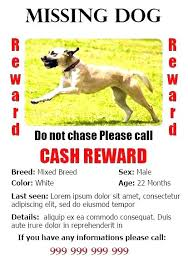 Pet Adoption Letter Template Dog Poster Resume Templates Sample Lost