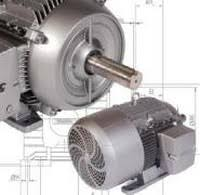 Electric Car Motor Slip Torque and Voltage
