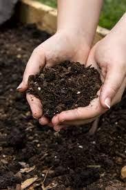 raised garden bed soil which soil