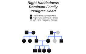 Sample Pedigree Chart Handness Family Pedigree Chart By Dominic Mazzoli On Prezi