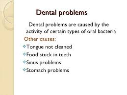 personal hygiene 28