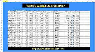 Weight Loss Challenge Spreadsheet Weight Loss Challenge Spreadsheet Template Magdalene