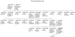 famiy tree traditional family tree package