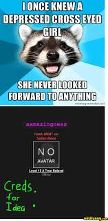 Lame Pun Coon meme funny | Why Are You Stupid? via Relatably.com