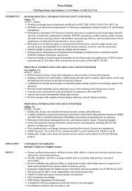 Information Security Engineer Sample Resume Information Security Principal Resume Samples Velvet Jobs 23