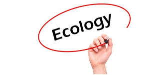 ecology papers archives essay writing help sample case study paper on ecology