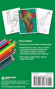 Small Picture Animal World Adult Coloring Book Travel Size Color With Music