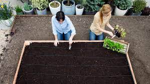 soil mixture for raised beds