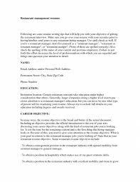 skills resume gdragons summary statements objective sample resume resume objective statements examples it resume summary it resume it resume summary statement glitzy it resume