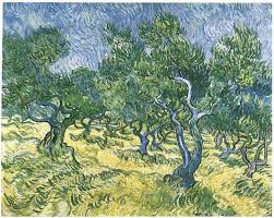 image only van gogh olive grove