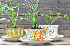 teacup herb favors picture