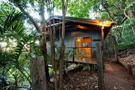 Treetops Seaview Montville Montville AUS  Best Price Guarantee Treehouse Montville