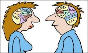 male and female brains similarities and differences pairedlife these structural and chemical differences are only a small sampling of the factors weighing in on how men and women differ in their actions behaviors