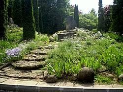 Small rockery in the Iai Botanical Garden, Romania