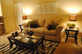Apartment Living Room Decorating Ideas Pictures Prodigious For Well 24