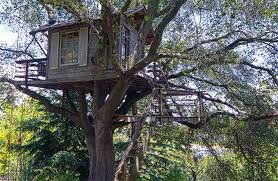 kids tree house. Beautiful Tree Backyard Rustic Treehouse Design Intended Kids Tree House