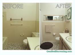 Apartment Bathroom Decorating Ideas Photos Home Decorations - Small apartment bathroom decor