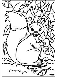Kleurplaat Eekhoorn Met Eikel Kleurplatennl