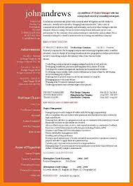 13+ project manager resume summary