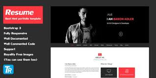 Best Html Resume Templates For Awesome Personal Sites Website