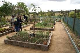 The Victorian Kitchen Garden Checking Out A Victorian Kitchen Garden Cliftoria An Adventure