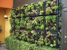 vertical gardening inspiration diy