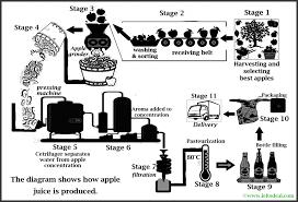 Ielts Academic Writing Task 1 Process Diagram On Apple