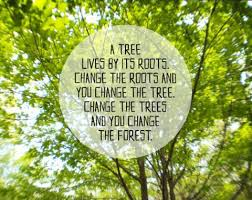 Tree Quotes Awesome Best 48 Tree Quotes And Motivational Thoughts With Pictures