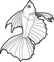Printable Coloring Sheets Fish Picture Pages Books As Well Print