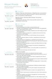 Senior It Auditor Resume Opinion Of Professionals