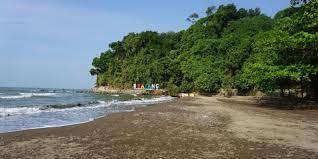 Indonesia memiliki taman safari yang tersebar di beberapa tempat, sesuai dengan habitat hewan. Pantai Ujungnegoro Batang Daya Tarik Aktivitas Liburan Lokasi Harga Tiket Pesisir