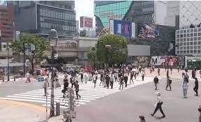 渋谷 交差点 定点 カメラ
