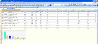 Report Examples Projectcodemeter Software Sizing For Outsourcing