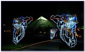 moody gardens festival of lights groupon