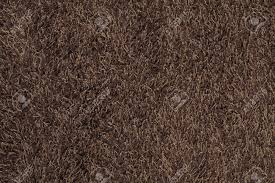 new brown fluffy rug background texture stock photo 5091269 r21 fluffy